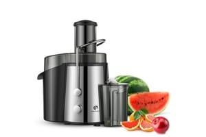 Extracteur de jus de fruits et legumes bien choisir celui qu il vous faut